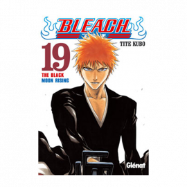 Manga Bleach 19